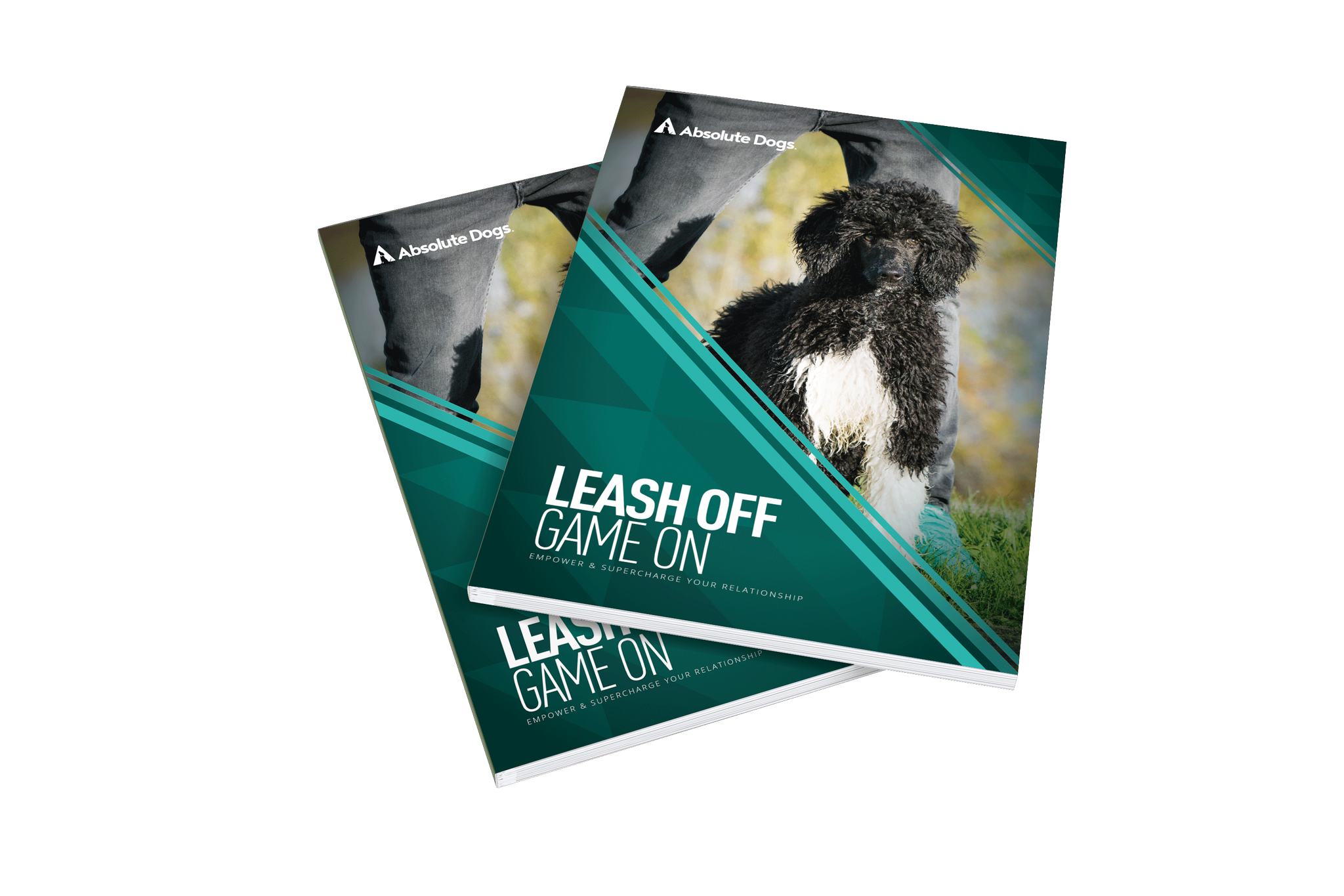 Grab Your FREE DVD Now - Off-leash reliability is yours!